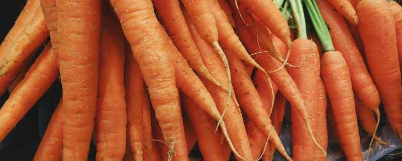 5 Unusual Things You May Not Know About Carrots