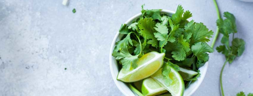 5 Fun Facts About Coriander